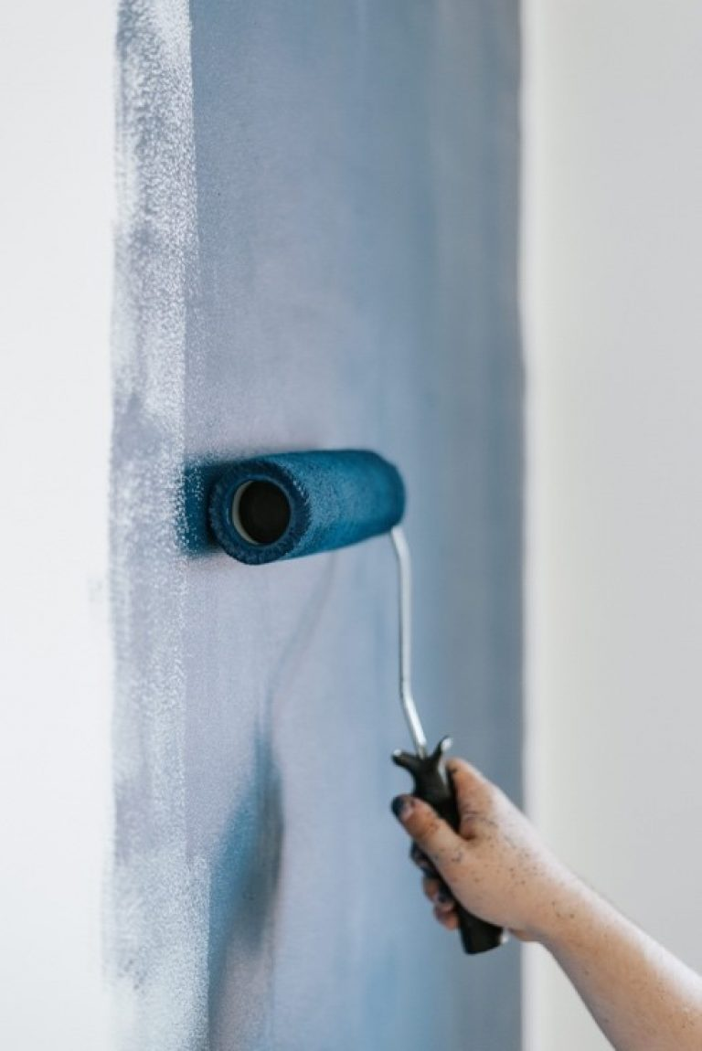 iPainter Wall Painting